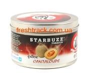 Тютюн для кальяну Starbuzz Cantaloupe (Мускусна Диня), фото 1, ціна