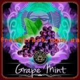Табак для кальяна Alchemist Straight 100 г Grape Mint (Виноград с Мятой), фото  2, цена