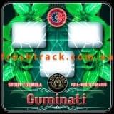 Тютюн для кальяну Alchemist Stout 100 г Guminati (Гуминаті), фото  2, ціна