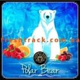 Табак для кальяна Alchemist Original 100 г Polar Bear (Белый Медведь), фото  2, цена