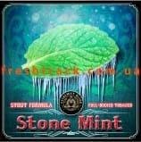 Тютюн для кальяну Alchemist Stout 100 г Stone Mint (Кам'яна М'ята), фото  2, ціна
